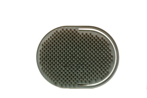 palm-brush-600x400